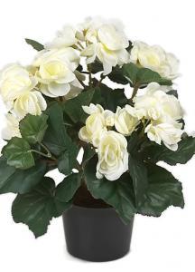 Mr Plant Begonia Vit - Konstväxt - 28 cm