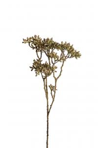 Mr Plant Bärkvist - Grön - 45 cm - www.frokenfraken.se