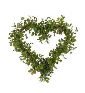 Mr Plant Lingonris hjärta - Grön - 25 cm