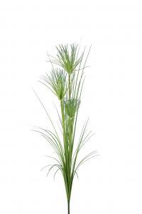 Papyrus - 130 cm - www.frokenfraken.se