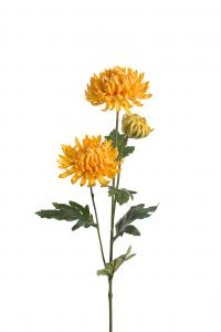 Chrysanthemum - Gul - 60 cm - www.frokenfraken.se