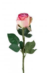 Ros - Rosa - 50 cm - www.frokenfraken.se