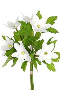 Mr Plant Vitsippor - Liten bukett