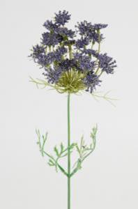Mr Plant Trachelium - Blå - 45 cm