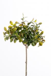 Mr Plant Lingonris kvist - Grön - 20 cm