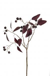 Mr Plant Bärkvist - - 85 cm - www.frokenfraken.se