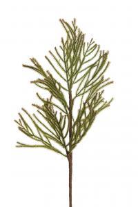 Barrkvist - Grön - 50 cm - www.frokenfraken.se