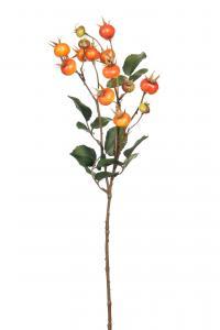 Nypon - Orange - 60 cm - www.frokenfraken.se