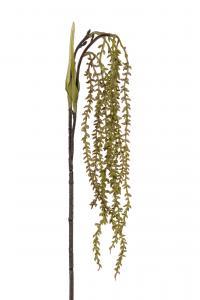 Succulent - Grön - 35 cm - www.frokenfraken.se