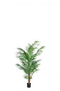 Areca Palm - Grön - 120 cm - www.frokenfraken.se