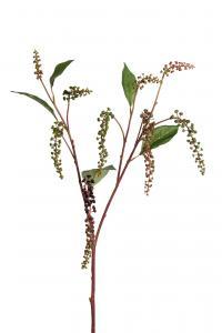 Mr Plant Bärkvist - Grön - 90 cm
