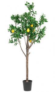 Mr Plant Citrusträd - Citron - Konstväxt - 210 cm