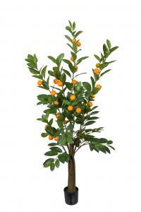 Citrus - Grön - 150 cm - www.frokenfraken.se