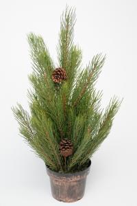 Tall - Grön - 60 cm - www.frokenfraken.se