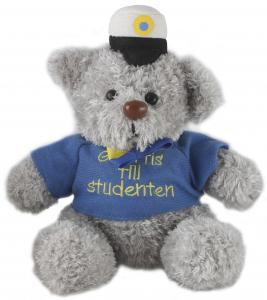Nalle - Student - 18 cm - www.frokenfraken.se