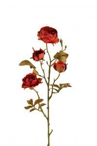 Ros - Brun - 60 cm - www.frokenfraken.se