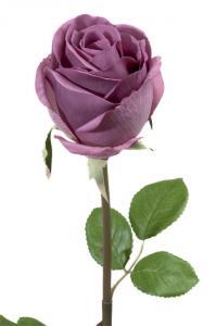 Mr Plant Ros - Lila långskaftad sidenros - 75 cm
