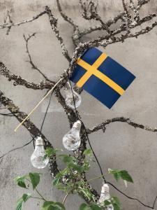 Flagga Sverige - 6 st pappersflaggor med träpinne - 15 x 20 cm - www.frokenfraken.se