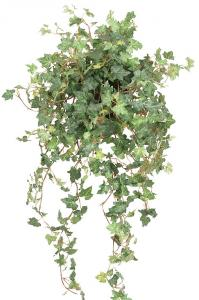 Mr Plant Murgröna - Konstväxt - 78 cm