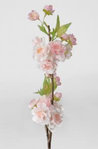 Körsbärsblom - Rosa - 45 cm - www.frokenfraken.se