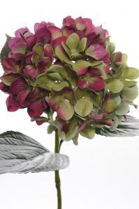 Hortensia - Röd - 65 cm - www.frokenfraken.se
