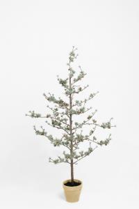 Lärkträd - - 135 cm - www.frokenfraken.se
