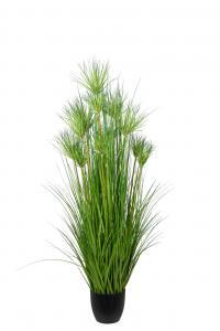 Papyrus - Grön - 150 cm - www.frokenfraken.se