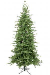 Mr Plant Gran Victoria slim 550 lp - - 240 cm