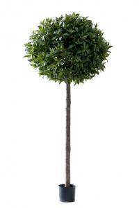 Lagerträd - Konstväxt - 220 cm - www.frokenfraken.se