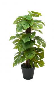 Mr Plant Monstera - Grön - 45 cm