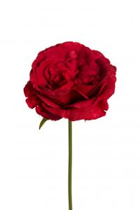 Ros - Röd - 25 cm - www.frokenfraken.se