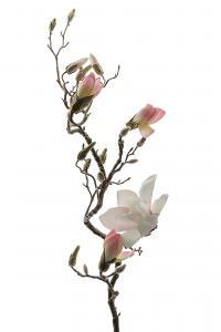 Magnolia - Rosa - 135 cm - www.frokenfraken.se