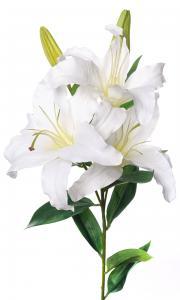 Mr Plant Lilja - Vit - 95 cm - www.frokenfraken.se