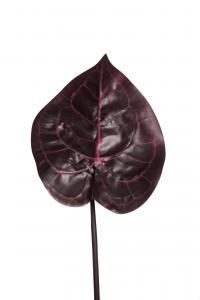 Mr Plant Blad - Röd - 45 cm