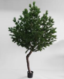 Tall - Pine Tree - 330 cm - www.frokenfraken.se