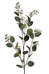 Mr Plant Eucalyptus - Grön - 105 cm
