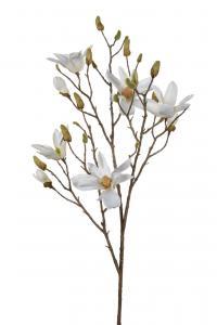 Magnolia - Vit - 115 cm - www.frokenfraken.se