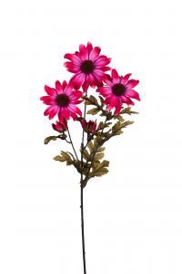 Rudbeckia - Lila - 65 cm - www.frokenfraken.se