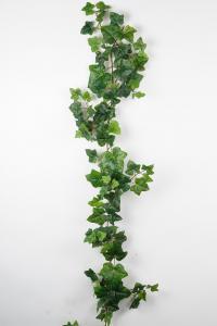 Mr Plant Murgröna - Grön - 180 cm