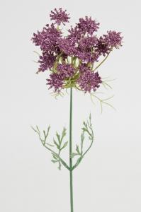 Mr Plant Trachelium - Lila - 45 cm
