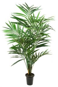 Mr Plant Kentia palm - Konstväxt - 120 cm