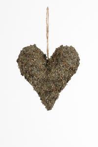 Mr Plant Hjärta - -