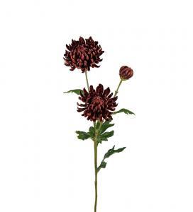 Chrysanthemum - Brun - 60 cm - www.frokenfraken.se