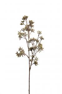 Mr Plant Bärkvist - Grön - 55 cm