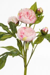 Pion - Rosa - 40 cm - www.frokenfraken.se