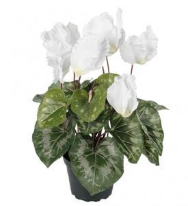 Mr Plant Cyklamen Vit - Konstväxt - 32 cm
