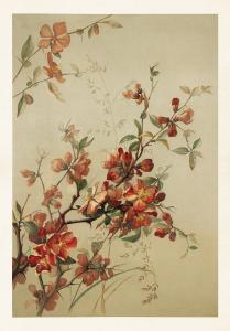 Poster - Vintage - Rosenkvitten - 70 x 100 cm - www.frokenfraken.se