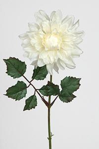 Dahlia - Vit - 45 cm - www.frokenfraken.se