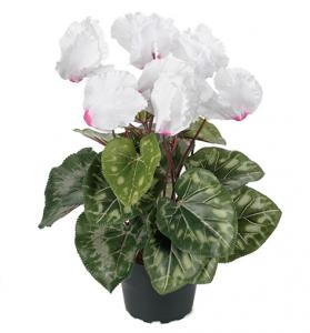 Mr Plant Cyklamen Vit med lite rosa - Konstväxt - 32 cm