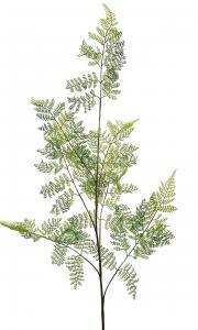 Mr Plant Ormbunksblad - Grön - 140 cm
